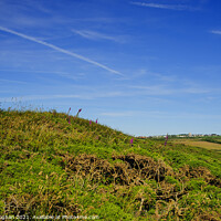 Buy canvas prints of Pembrokeshire Countryside Near Roch in Wales by Cassi Moghan