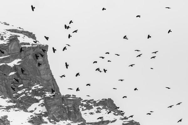Above the ridge Canvas print by Paolo Seimandi