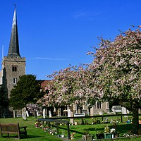 Buy canvas prints of St John the Baptist Church, Danbury, Essex by Nathalie Hales