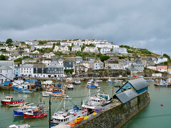 Mevagissey Harbour, Cornwall Canvas Print by Nathalie Hales