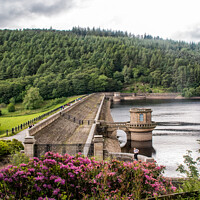 Buy canvas prints of Lady bowers Dam + walk over the dam  by Holly Burgess