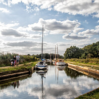 Buy canvas prints of Horsy Norfolk Broads by Holly Burgess