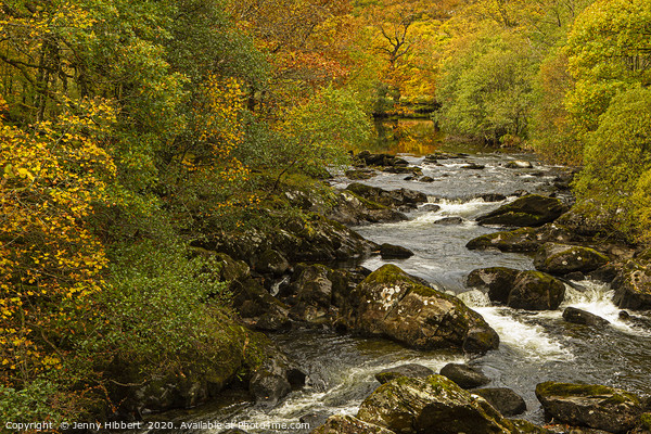 Autumnal view of river near to Capel Curig North W Framed Print by Jenny Hibbert