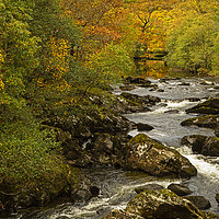 Buy canvas prints of Autumnal view of river near to Capel Curig North W by Jenny Hibbert