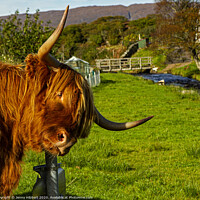 Buy canvas prints of Highland cow enjoying a scratch on sign post by Jenny Hibbert