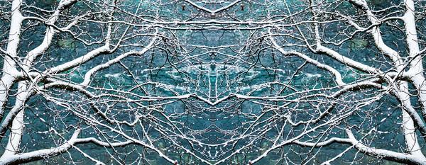 Snow Angel Canvas print by Nando Lardi
