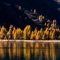 Buy canvas prints of Lake Sils by Nando Lardi