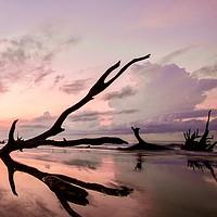 Buy canvas prints of Cemetery Beach by Nando Lardi