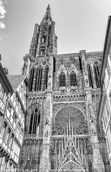 Strasbourg Cathedral Canvas print by Nando Lardi