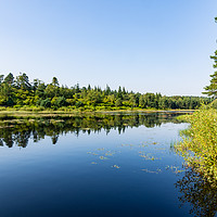 Buy canvas prints of The Still Lake by Robert Barnes