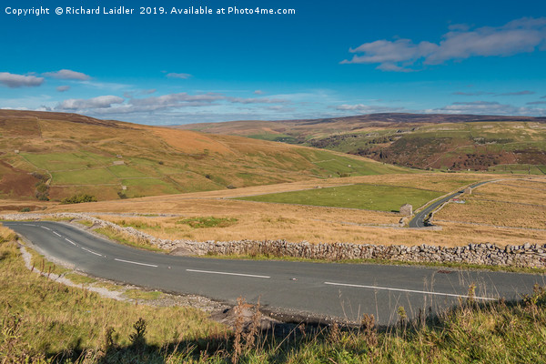 Down into Swaledale Canvas Print by Richard Laidler