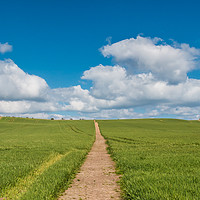 Buy canvas prints of Path to the Horizon by Richard Laidler