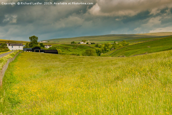 Ettersgill Farms and Hay Meadows, Teesdale Canvas print by Richard Laidler