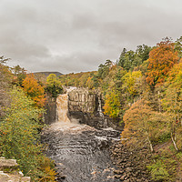 Buy canvas prints of High Force Waterfall, Teesdale, in Autumn by Richard Laidler