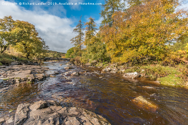Autumn on the River Tees at Forest in Teesdale Canvas print by Richard Laidler