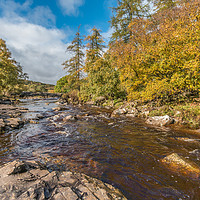 Buy canvas prints of Autumn on the River Tees at Forest in Teesdale by Richard Laidler