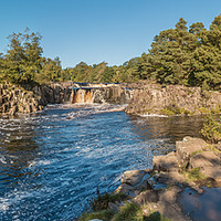 Buy canvas prints of Autumn Morning at Low Force Waterfall Panorama by Richard Laidler