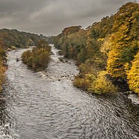 Buy canvas prints of Autumn on the River Tees at Winston 2 by Richard Laidler
