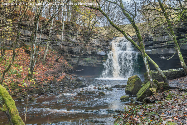 Autumn at Summerhill Force Waterfall, Teesdale Canvas Print by Richard Laidler