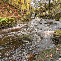 Buy canvas prints of Bow Lee Beck and Summerhill Force in Autumn 2 by Richard Laidler