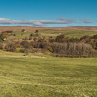 Buy canvas prints of Upper Teesdale Panorama, Ettersgill to Bowlees by Richard Laidler
