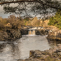 Buy canvas prints of Winter Sun on Low Force Waterfall Teesdale (1) by Richard Laidler