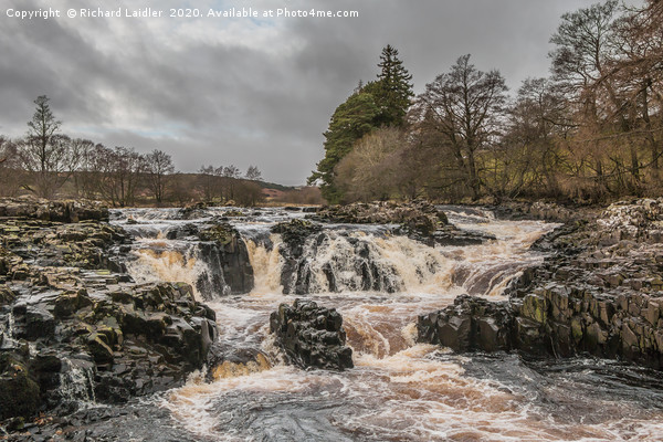 Salmon Leap Falls, River Tees, in Wintry Sun Canvas Print by Richard Laidler