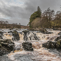 Buy canvas prints of Salmon Leap Falls, River Tees, in Wintry Sun by Richard Laidler