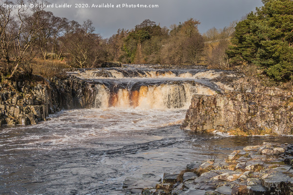 Winter Sun, Low Force Waterfall, Teesdale Canvas Print by Richard Laidler