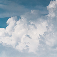 Buy canvas prints of Bovine Big Sky by Richard Laidler