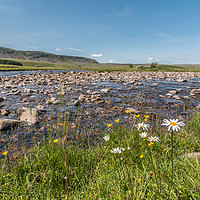 Buy canvas prints of Harwood Beck meets the River Tees by Richard Laidler