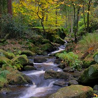 Buy canvas prints of Wyming Brook  by Julian Taylor