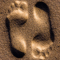 Buy canvas prints of Footprints In The Sand by Jeff Hobkirk
