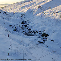 Buy canvas prints of Campsie in the Snow by Iain McGillivray