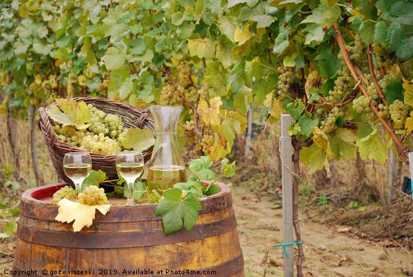 white wine and grape on barrel in vineyard Canvas Print by goce risteski