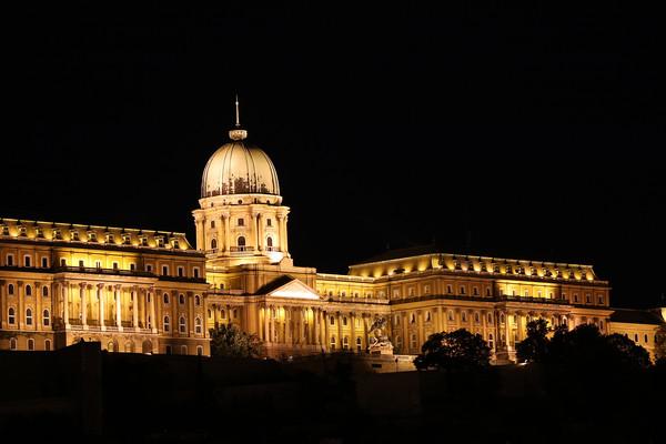 Budapest royal castle by night Canvas Print by goce risteski