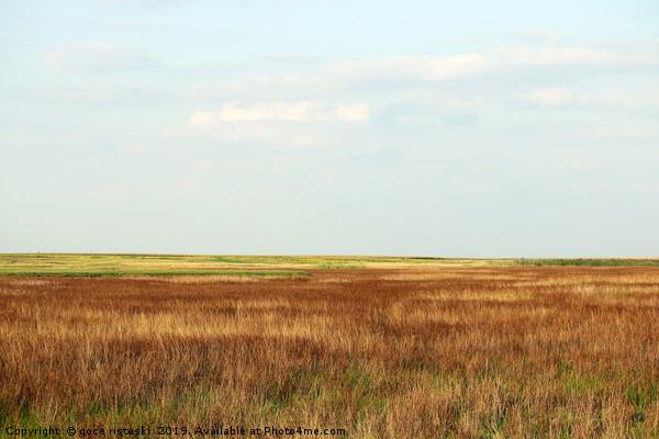 field autumn season nature landscape Framed Mounted Print by goce risteski