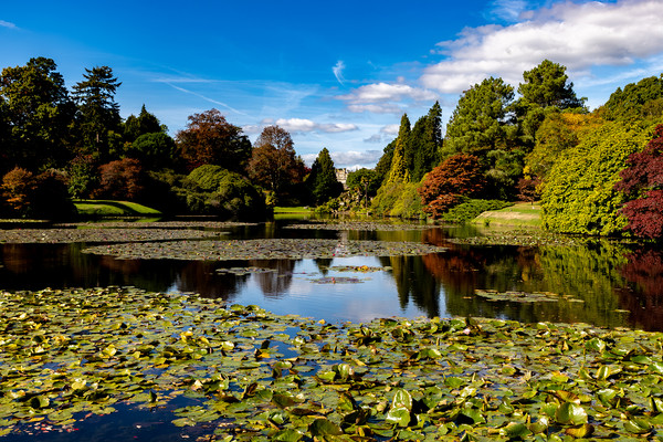 Sheffield Park Framed Mounted Print by Nick Hunt
