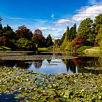 Buy canvas prints of Sheffield Park by Nick Hunt