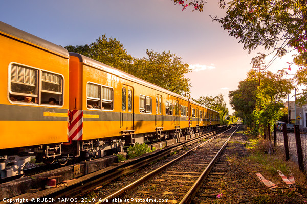 Electric train in Buenos Aires, Argentina. Canvas print by RUBEN RAMOS
