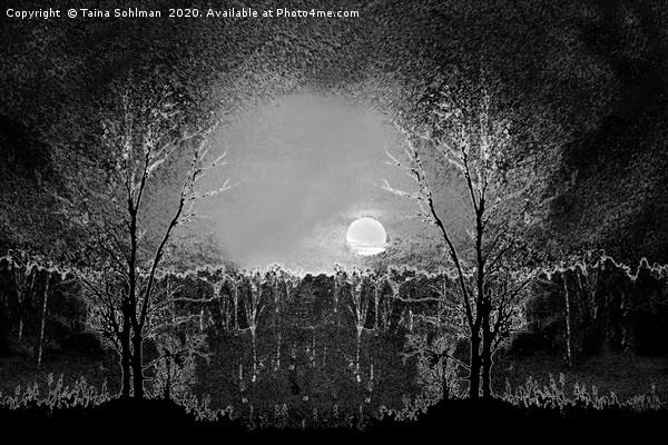 Full Moon Magic, Monochrome Canvas print by Taina Sohlman