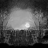Buy canvas prints of Full Moon Magic, Monochrome by Taina Sohlman