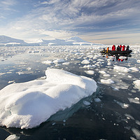 Buy canvas prints of Antarctic zodiac. by Ashley Cooper