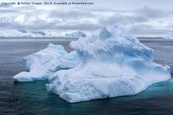 Antarctic blue berg. Canvas print by Ashley Cooper
