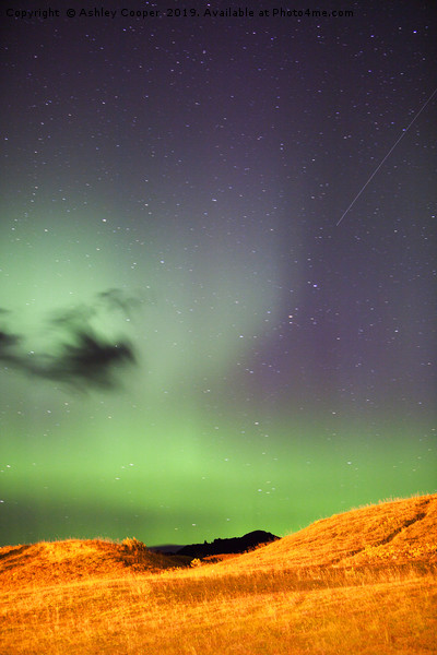 Aurora Canvas print by Ashley Cooper
