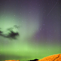 Buy canvas prints of Aurora by Ashley Cooper