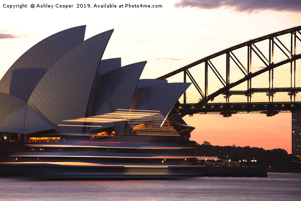 Sydney Opera House Canvas print by Ashley Cooper