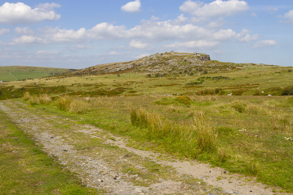 Landscape on Bodmin Moor Canvas print by Carolyn Barnard