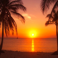 Buy canvas prints of Barbados Sunset by Jan Gregory