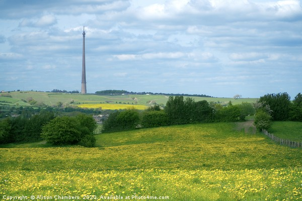 Emley Moor Transmitter Canvas Print by Alison Chambers